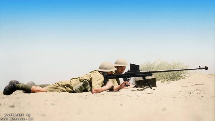 """2nd New Zealand Division soldiers operating an anti-tank rifle during training at Maadi Camp in Egypt. c.1941-43  The Rifle, Anti-Tank, .55in, Boys commonly known as the """"Boys Anti-tank Rifle"""" (or incorrectly """"Boyes""""), was a British anti-tank rifle in use during World War II."""