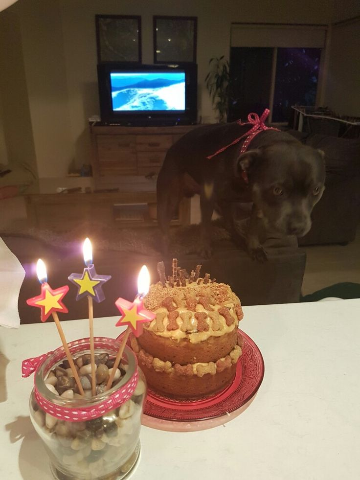 Happy Birthday 2, 4, 6, 8 bog in dont wait!
