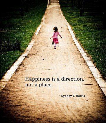 Geluk is een richting. Geen punt.