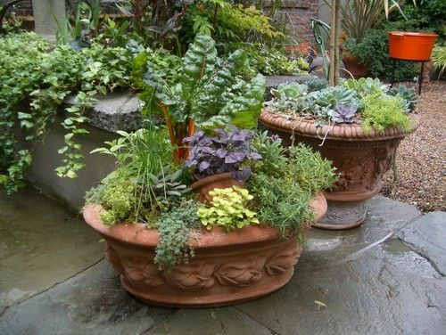 herb container gardens ForPatio Herb Garden Designs Containers