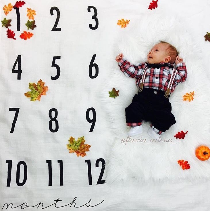 Fall Seasonal Idea For Monthly Baby Pictures September October Or November Monthly Baby Pictures Baby Milestone Photos Baby Milestones Pictures