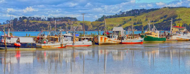 Boats at Coromandel, NZ