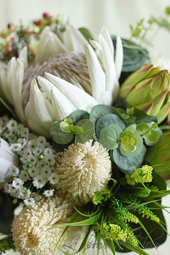A stunning extra large bouquet of artificial Australian native flowers. An eclectic mix of beautiful white, cream and green natives. Absolutely stunning white King Protea surrounded by white banksias, white proteas (smokey joes), green protea, Blushing Bride, Geraldton wax, spinning gum and grasses. Included is a matching grooms buttonhole. This custom silk flower bouquet is approx. 35 cm (14) in diameter. The skirt of the bouquet is finished with a collar of spinning gum. The stems are…