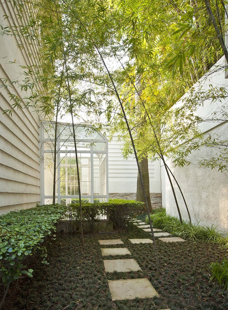 Composição de Bambú-mossô, Viburno e grama-preta Foto: Salvadore Busacca