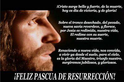 Cristo ha resucitado y con su claridad ilumina al pueblo rescatado con su sangre. Aleluya.