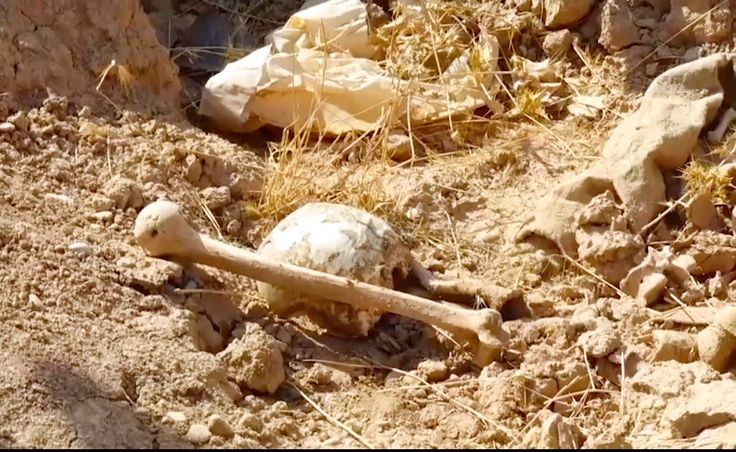FOX NEWS: Mass graves discovered in former ISIS-controlled territory in Iraq could contain 400 bodies