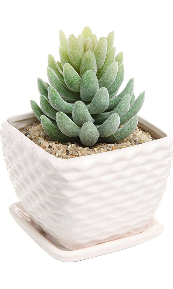 Contemporary White Ceramic Succulent Planter Flower Pot w/ Decorative Wavy Coil Design & Drainage Plate Best Price