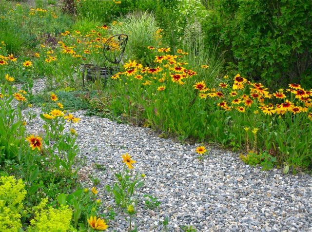 8 best images about wildflowers on pinterest gardens for Wild flower garden designs