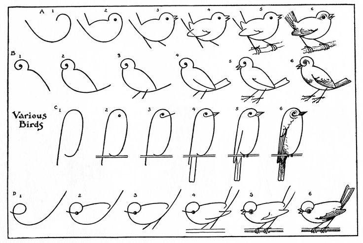 How to draw vintage birds @Emily Rose | Simply Vintagegirl A bird like this was one of the first things my mom and aunt taught me to draw on a train to Paris when I was 8. <3