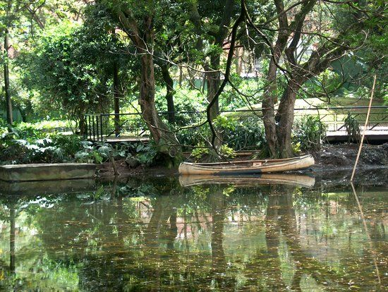 Book your tickets online for Jardin Botanico de Medellin, Medellin: See 985 reviews, articles, and 398 photos of Jardin Botanico de Medellin, ranked No.8 on TripAdvisor among 132 attractions in Medellin.
