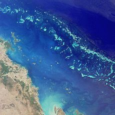 This is the Great Barrier Reef in Australia. My MOST favorite place in the world so far! LOVED scuba diving there!