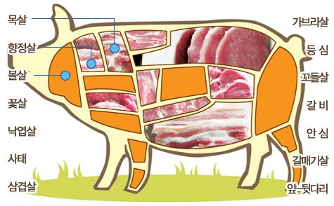 A carnivore's guide to Korean meat cuts ~ take to the store or restaurant!
