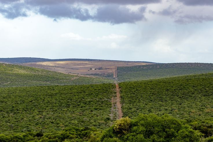 The Green - Addo Landscape The Green -  Addo is a town in Sarah Baartman District Municipality in the Eastern Cape province of South Africa. Region east of the Sundays River, some 72 km northeast of Port Elizabeth.
