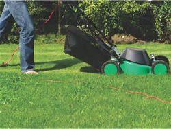 I nostri giardinieri vantano anni di esperienza professionale del settore. Utilizziamo le più avanzate metodologie di giardinaggio curando la scelta di piante e materiali.