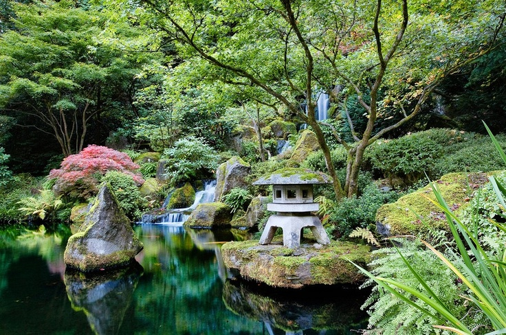34 best koi pond images on pinterest japanese gardens for Japanese garden with koi pond