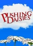 """Pushing Daisies"" TV Show on ABC (2007 - 2009) --- Pie-maker Ned's (Lee Pace) ability to bring the dead back to life with his touch has stipulations, such as never being able to touch that person again lest they die all over again. Which means that he can never touch his formerly-dead girlfriend Chuck (Anna Friel)! Meanwhile, his private eye pal (Chi McBride) uses Ned's ability to interview the dead post-mortem to solve their cases. Co-starring Ellen Greene, Swoosie Kurtz, and Kristin…"