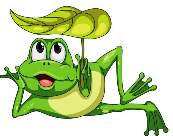 Tubes grenouilles grenouilles dessin grenouille grenouille verte et croquis animaux - Dessin de grenouille verte ...
