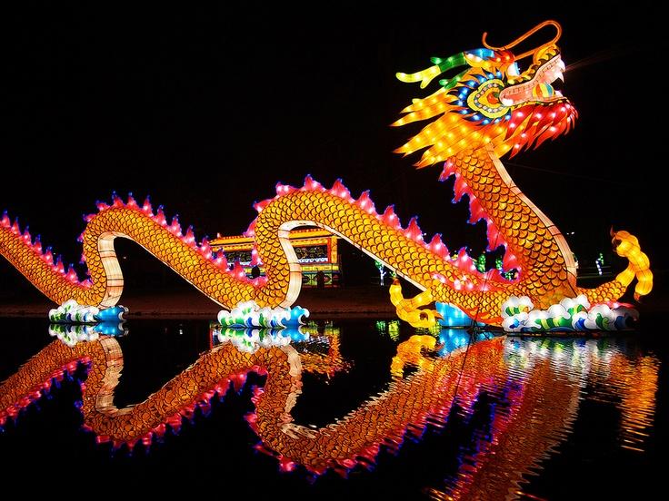 china lights rotterdam