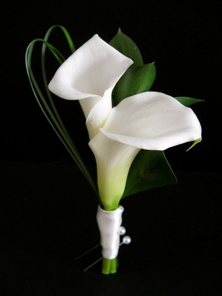 Boutonniere Calla Lily Greenery Maine Wedding Flowers Photos & Pictures - WeddingWire.com