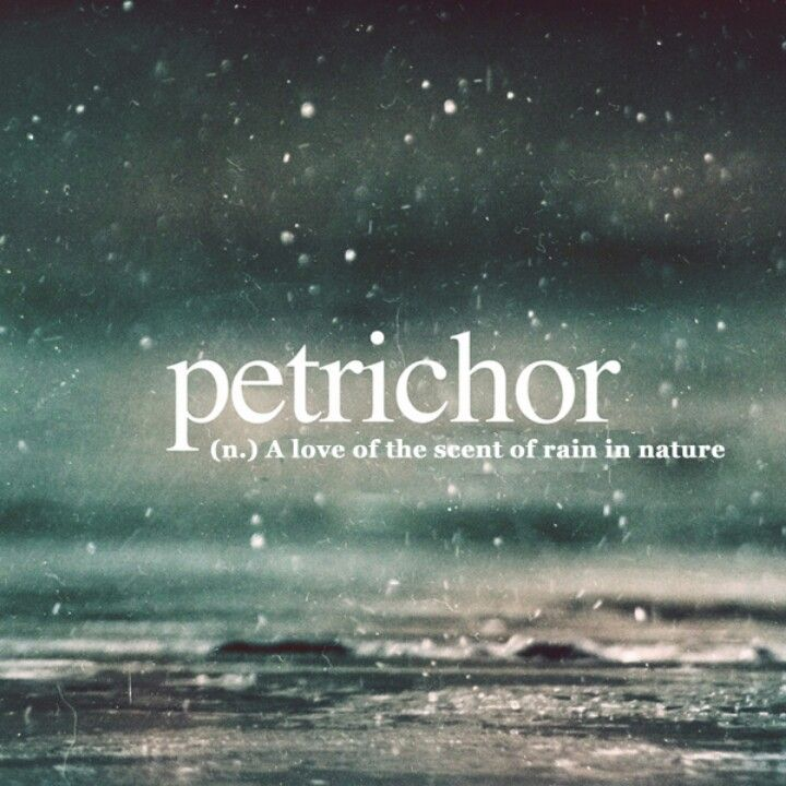 the scent of rain on dry earth. The word is constructed from Greek, petra, meaning stone + ichor, the fluid that flows in the veins of the gods in Greek mythology