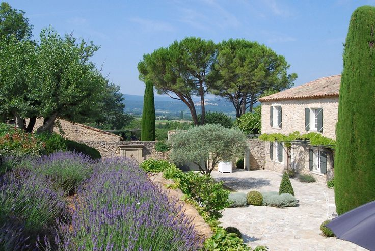 Love most of this - the lavender, the olive trees, the cupressus - Pinus pinea (stone pine) which gives pine nuts would be a good candidate as its umbrella shape is very structural.  Lots of gravel toning in with the stone of the house - perfect.