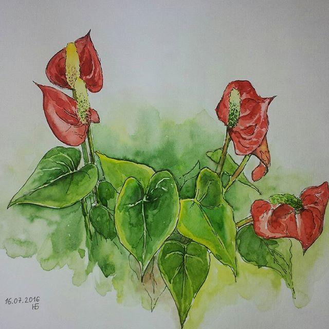 Anturium #flowers#watercolor#green#red#anturium#акварель#цветы