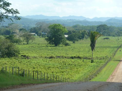 Cheap homes in Belize | Finding Home in Faraway Belize (Belizean Postcards, Spanish Lookout Ed ...