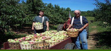 Sun High Orchards Randolph Nj Shorties Pinterest