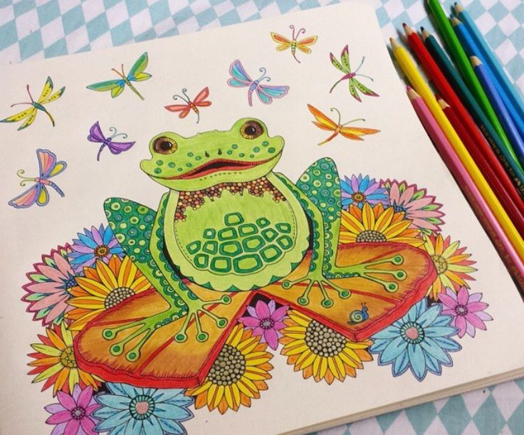 Johanna Basford Adult ColoringColoring BooksColouringJohanna BasfordColor InspirationForestsFrogsAddictionEnchanted Forest