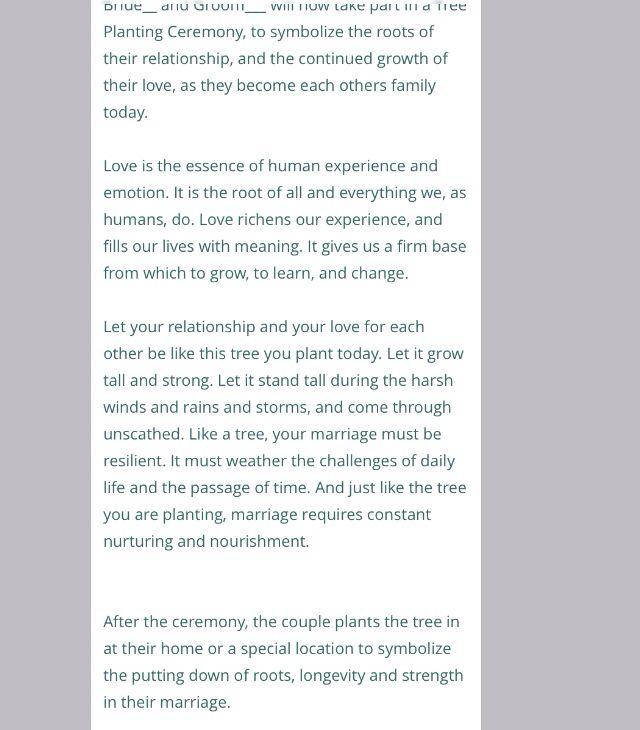 Order Of Speeches At A Wedding: Best 25+ Wedding Speech Order Ideas On Pinterest