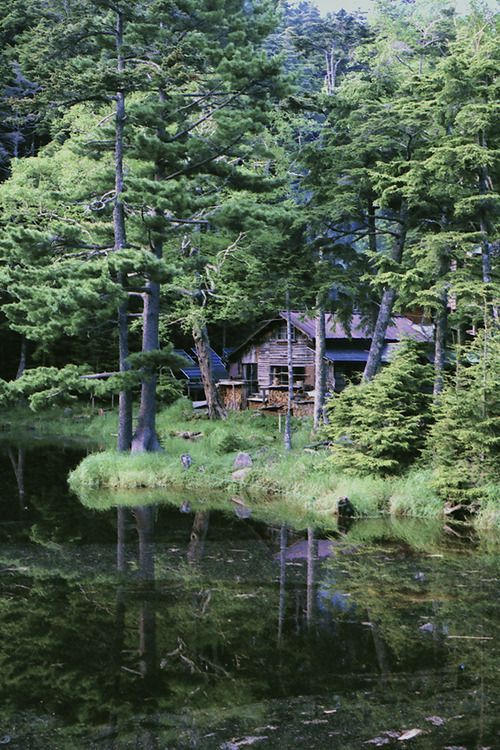 a secluded vacation get away home! cabin by the lake