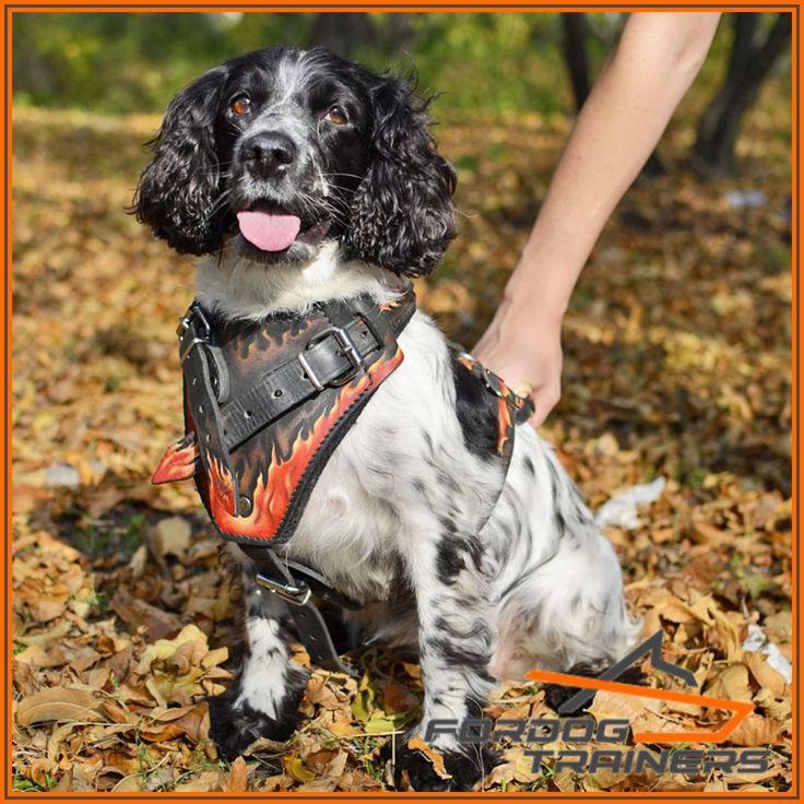 Skórzane szelki regulowane dla psów z obrazkiem «Płomień
