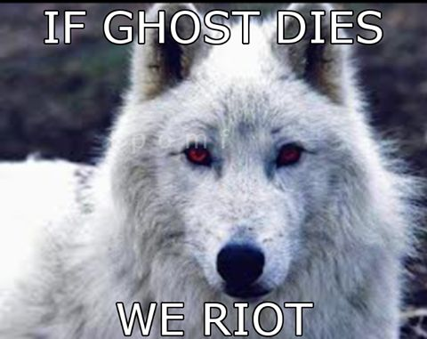 Stop killing direwolves. Seriously! I don't care half so much when a person dies as I do when a direwolf dies! Leave Ghost and Nymeria out of it! And for crying out loud, reunite Arya and Nymeria and make it sweet, no grudges!