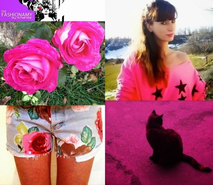 #roses #flowers #inspirations #cats #girl  #blogger #pink  #fashion #blogger #style THE FASHIONAMY by Amanda: #rose e #fiori #gatti and more, my #inspiration pics
