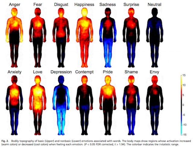Bodily topography of emotions associated with words (via pnas.org) A new study by a team of Finnish researchers recently published in the jo...