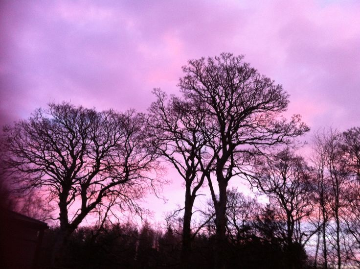 Beautiful chilly January dawn caught for one of our January blogs