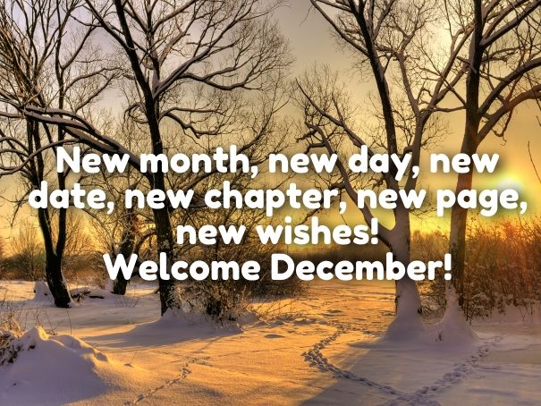 hello december quotes                                                                                                                                                                                 More