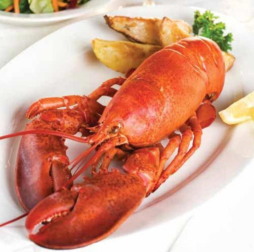 Lobster steamed in Stella Artois   2017 Kentucky Derby & Oaks   May 5 and 6, 2017   Tickets, Events, News