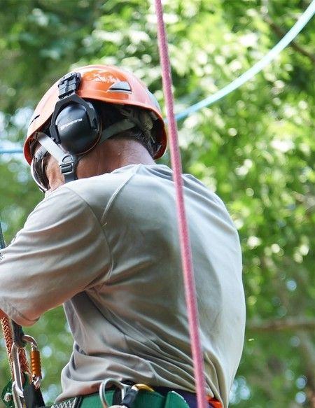 Samson Rope Catalog - Arborist 2017