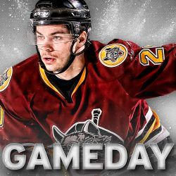 Check out a Chicago Wolves hockey game at Allstate Arena!  Ticket prices range from $11-53 and is just a short 30-minute drive!
