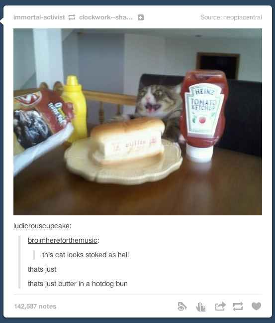 How do you eat your butter    28 Times Tumblr Missed The Point