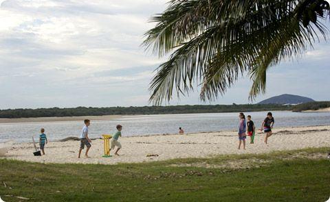 Cotton Tree Sunshine Coast
