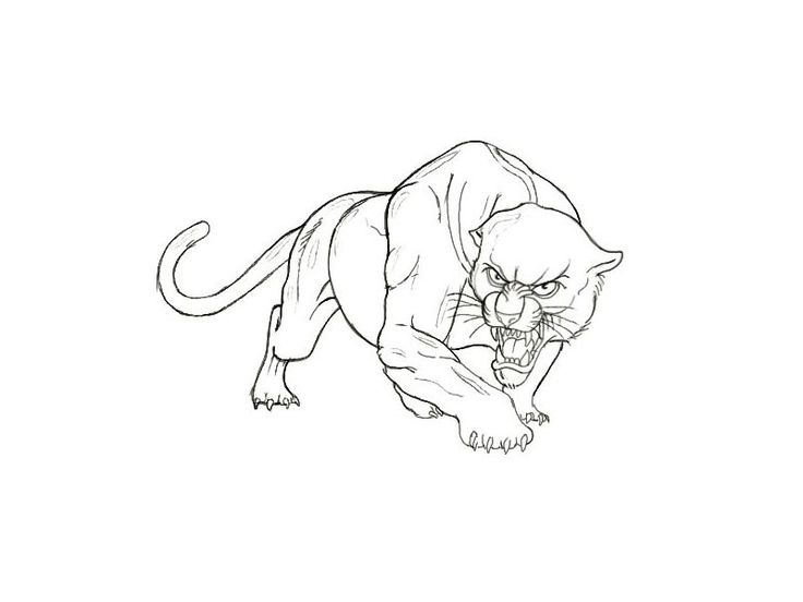 Panther_sketch_muscular_animal_tattoo_design.jpg (800u00d7600) | Tattoos | Pinterest | Tattoo Tatoo ...