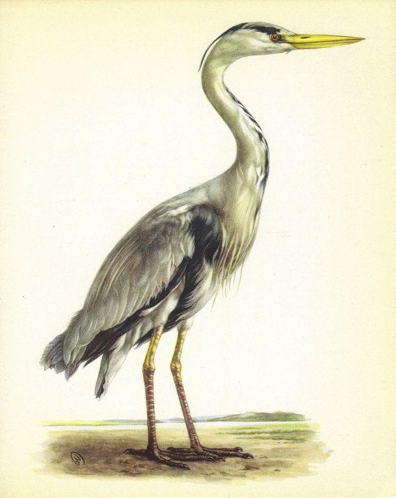 Charm Bracelet - grey heron illustration by VIDA VIDA DZdo8