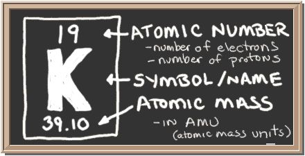 Chalkboard with description of periodic table notation for potassium.  There is a square with three values in it.  Top has atomic number, center has element symbol, and bottom has atomic mass value.  The atomic number equals number of protons and also the number of electrons in a neutral atom.  Atomic mass equals the mass of the entire atom.