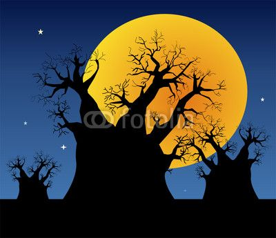 Full Moon and a Baobab Tree