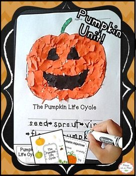 fall pumpkin craft life cycle for preschool kindergarten first grade - Halloween Art For Kindergarten