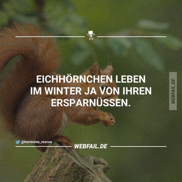 Badumtsch! | Webfail - Fail Bilder und Fail Videos