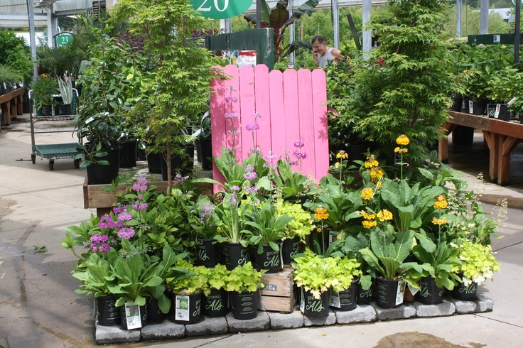 37 Best Images About Al 39 S Garden Centers Oregon On