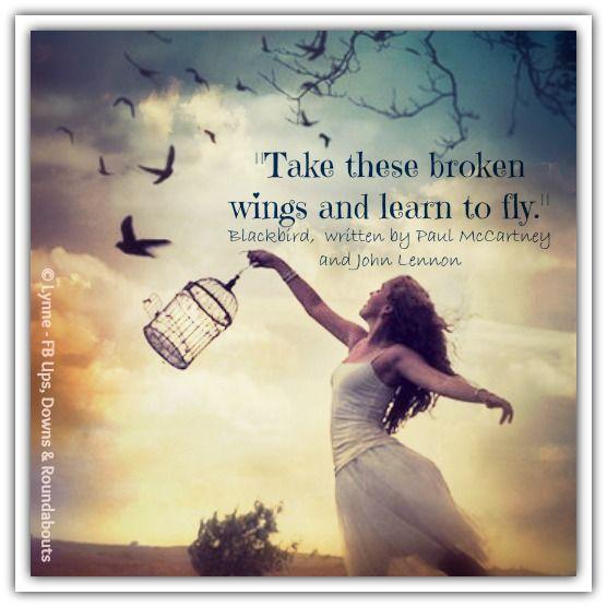 """Take these broken wings and learn to fly.""   Blackbird,  written by Paul McCartney and John Lennon"